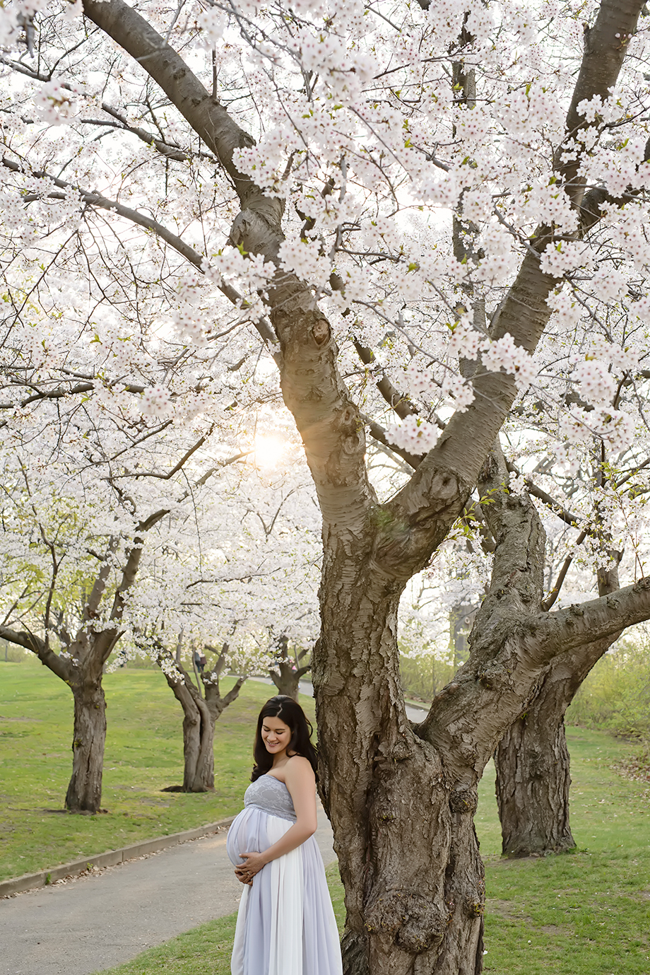 Cherry Blossom Maternity Picture